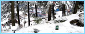 Tours to Mussoorie, Mussoorie Tours Himachal India