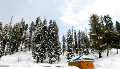 Kashmir Luxury Tours, Kashmir Tours Packages